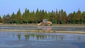 4K, paisagem bonita do trabalhador asiático ara o campo do arroz usando o agrimotor filme