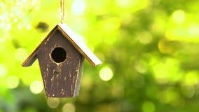 4K panning videoklem van een vogelhuis die in een boom in een tuin tijdens de zomer hangen stock video