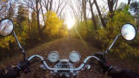 4K Paseo asombroso de la motocicleta hacia puesta del sol en el camino boscoso de oro en el otoño, punto de vista amplio del jine metrajes