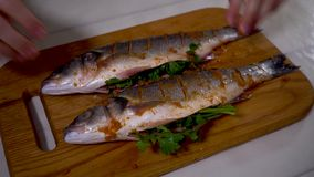 4K, pesce; alimento; cucina; animale; mano; uomo; bianco; sano; spigola; crudo; frutti di mare; archivi video