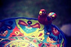 kąpielowy ptak Obraz Stock