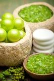 kąpielowych zielonych kopalin solankowy zdrój Zdjęcia Royalty Free
