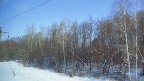 4K Point of view from the window of a passenger train. The deserted winter forest moves outside the window stock footage