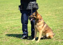 K9 police officer with his dog stock photos