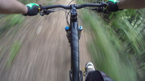 4K POV Mountain biker in forest trail riding stock footage