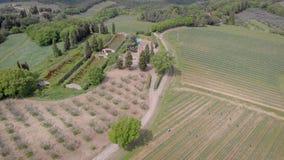 4K Powietrzna strzelanina winnicy, pola i drzewa w Tuscany, Włochy w lecie zbiory wideo