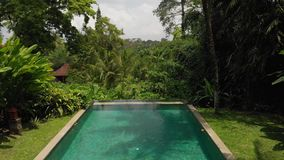 4K powietrzny latający wideo nieskończoność pływacki basen przy luksusową willą w dżungli Bali wyspa zbiory