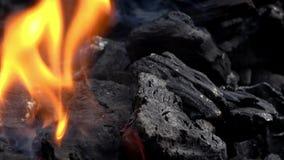 4K Primer del burning del carb?n de le?a Humo y llamas Carbón y llama calientes metrajes