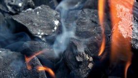 4K Primo piano della combustione del carbone Fumo e fiamme Carbone e fiamma caldi archivi video