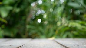 4K pusta drewniana deska z zielonymi drzewnymi liśćmi kiwa od wiatru przy tłem z bokeh światłem zielony naturalny tło, kopii prze zbiory wideo