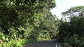 4K que conduce en el camino de la montaña a través de Forest With Turns en Asia almacen de metraje de vídeo
