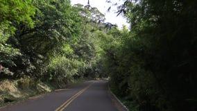4K que conduce en el camino de la montaña a través de Forest With Turns en Asia almacen de video