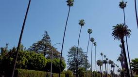 K?rning till och med Beverly Hills med dess palmtr?d - loppfotografi arkivfilmer