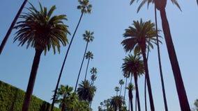 K?rning till och med gatorna av Beverly Hills - loppfotografi stock video