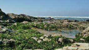 4K - Roches et mer à une plage portugaise banque de vidéos