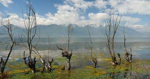 4k s'est défraîchi dans l'eau, montagne et le nuage réfléchissent sur le lac, erhai Dali, porcelaine banque de vidéos