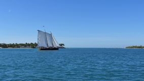 4k sail boat Florida Keys stock video