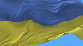 4k seamless Close up of Ukraine flag slow waving in wind.alpha channel included. 4k seamless Close up of Ukraine flag slow waving with visible wrinkles.A fully stock video footage