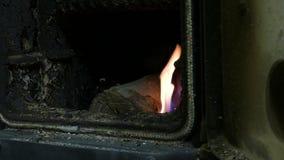 4K si chiudono sul colpo della mano della donna che mette i ceppi di legno nel fuoco bruciante in fornace di legno all'orario inv stock footage