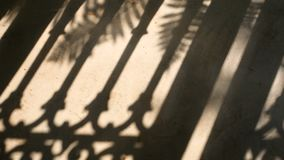 4K. silhouette shadow of fence and palm leaves motion by natural wind on cement floor. 4K. silhouette shadow of fence and palm leaves motion by natural wind on stock video
