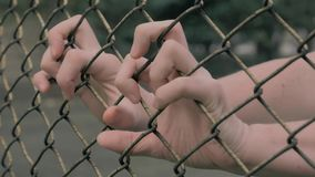 Close-up view of young man`s hands shaking metal mesh at fenced area. Helpless man shaking a metal fence trying to. 4K slow motion shot of young man`s hands stock footage