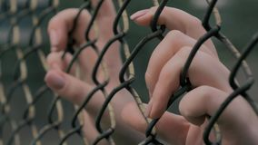 Close-up view of young woman`s hands grabing metal mesh at fenced area. 4K slow motion shot of young woman`s hands shaking metal mesh at fenced area stock video footage