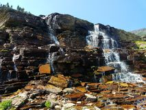 4k som förbluffar den Rocky Mountain glaciären, strömmar vattenfallet i sommaren med blommor Arkivfoto