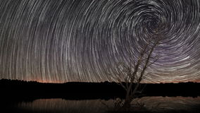 4 K Spiral Star trails with reflection on Lake. Lonely old tree stock video footage