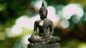 4K Statue 0ld Buddha mit einem natürlichen Hintergrund stock video