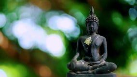4K Statue 0ld Buddha mit einem natürlichen Hintergrund stock video footage