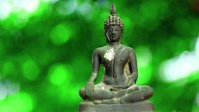4K Statue 0ld Buddha mit einem natürlichen Hintergrund stock footage