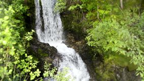 4k steady view on small stone cliff mountain forest river waterfall in green tree wild nature landscape stock footage
