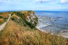K?stenlinie von Kaikoura-Halbinsel, S?dinsel, Neuseeland stockfotos
