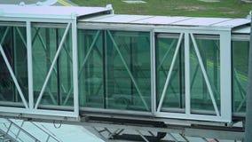 4k stewardess die door jetway en binnengaand vliegtuig inscheept om vlucht te nemen stock videobeelden