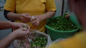 4K, Taiwanese team of chefs cooking traditional food. Woman making dumplings stock video footage