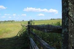 kąta pola trawy lato widok szeroki Obrazy Royalty Free