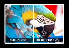4K television display Stock Photography