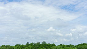 4K Time-lapse : Blue sky clouds over the tree forest. stock footage