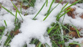 4K Time-Lapse of melting snow stock video footage