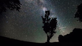 4K Time Lapse. Milky Way And Tree In Mountains. stock footage