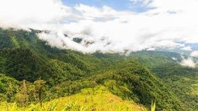 4K Timelapse, cloudscape i rainforesten, Thailand arkivfilmer