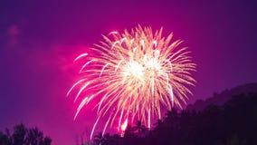 4K timelapse Het vuurwerk van het nieuwjaar over de palmen in de keerkringen in Phuket stock footage