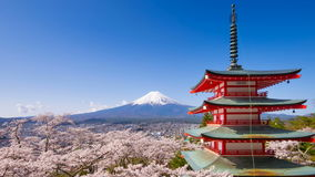 4K Timelapse of Mt. Fuji with Chureito Pagoda in spring, Fujiyoshida, Japan stock video