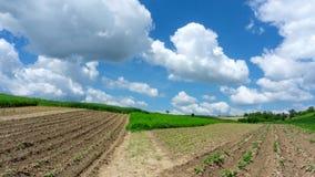 4k timelapse of plowed field. stock video