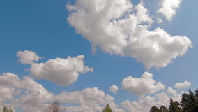 4K. Timelapse rolling clouds over trees blue sky stock footage