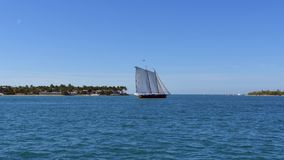 4k timelapse sail boat in the water stock video