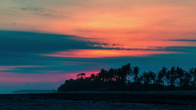 4K Timelapse. Sunset on the background of palm trees. 15 July 2015, Bali, Indonesia stock footage