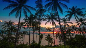 4K TimeLapse. Sunset at sea on a background of palm trees, Koh Samui, Thailand. 4K TimeLapse - August 2014, Samui island, Thailand stock video