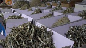4K torkad skaldjur som används i koreansk kokkonst Shoppa i den Jagalchi marknaden Busan lager videofilmer