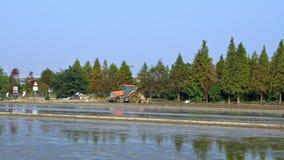 4K, trator panorâmico bonito que ara o campo do arroz no campo em Taiwan filme